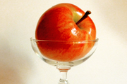 Wine Bar | New York's Five Must-Have Apple Cocktails
