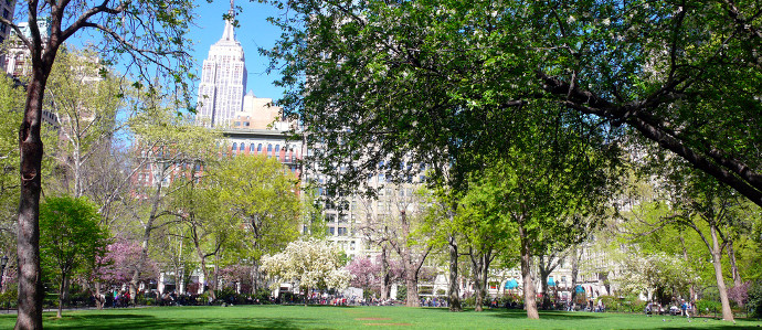 Where to Drink After a Day at Madison Square Park