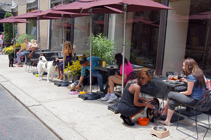 Wine Bar | Let the Dogs Out: 7 Bars Where You Can Drink With Rover in Brooklyn