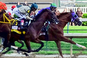 Wine Bar | Where to Watch the 141st Kentucky Derby in NYC