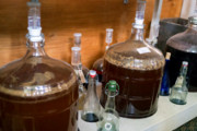 Craft Beer New York City   Move Over Kombucha, Kefir Beer Could Be the Next Big Thing in Fermentation   Drink NYC