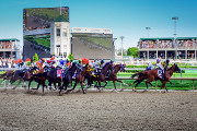 Wine Bar | Where to Watch the 2017 Kentucky Derby in New York City