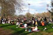Wine Bar | Where to Drink After a Day at McCarren Park