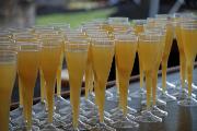 Wine Bar | New York City's Best Bottomless Brunches