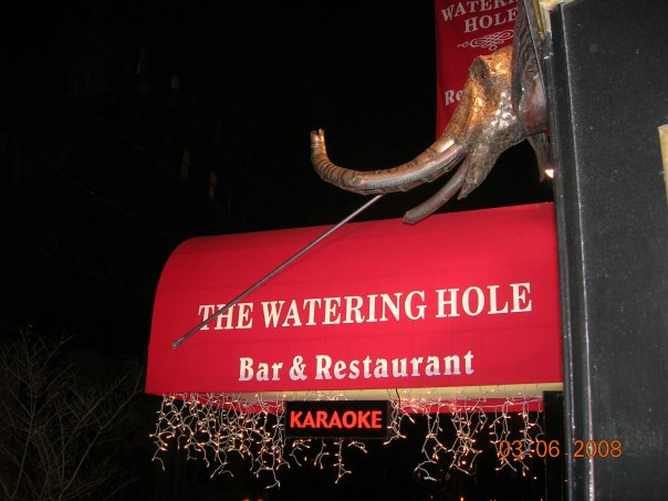 Watering Hole, The